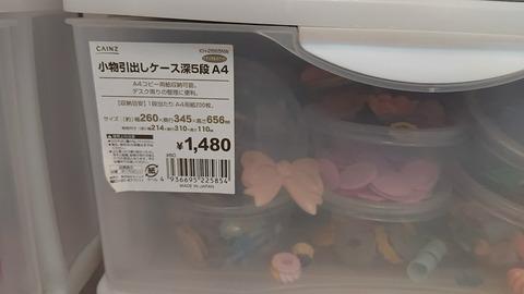 DSC_2500