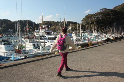 須崎遊歩道小白浜漁港
