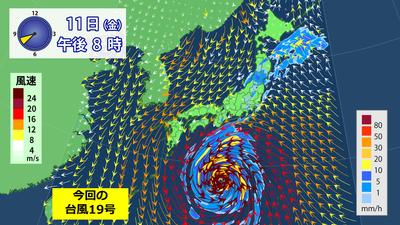 台風19号雨風1