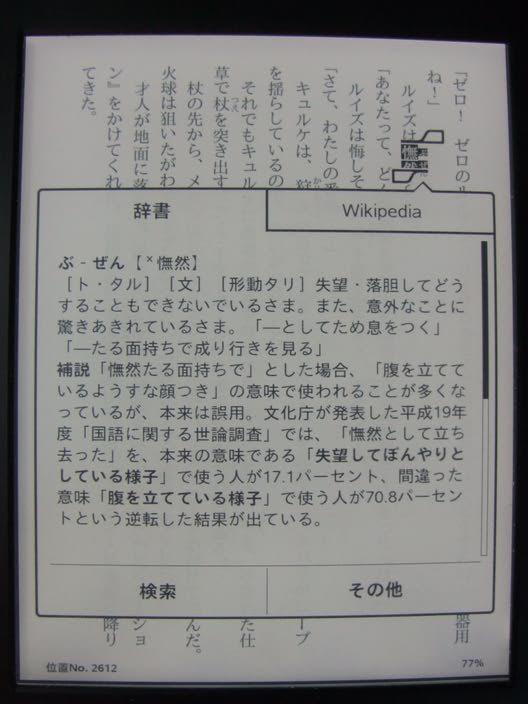 kindlePW2_03