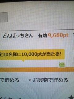52609913.jpg