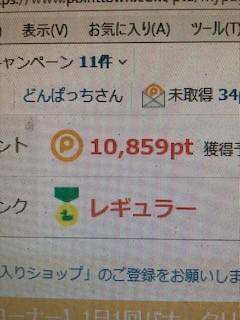 97d98cc1.jpg