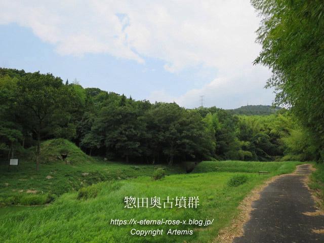 17.7.28.2 惣田奥古墳群  (15)