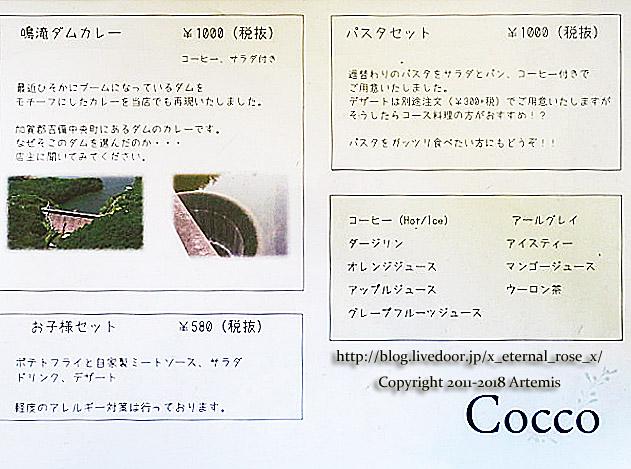 18.5.10 cocco  (28)