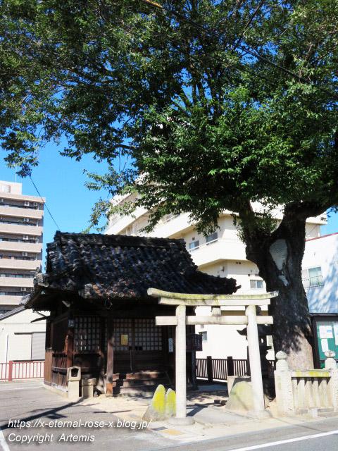19.9.26.1 榎本神社  (1)