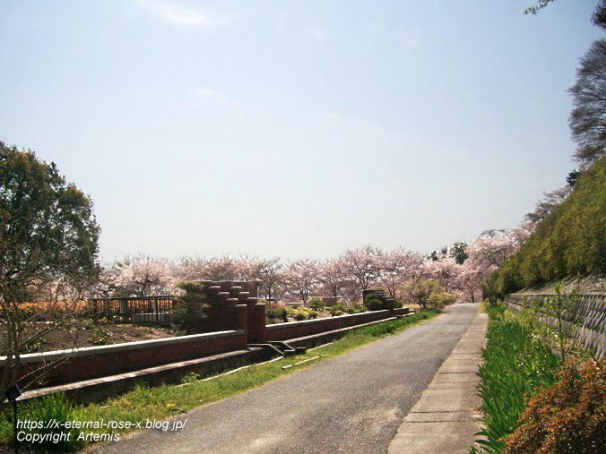 11.4.14.1 半田山植物園  (92)