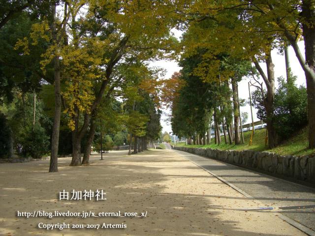 9 由加神社 和気  (4)