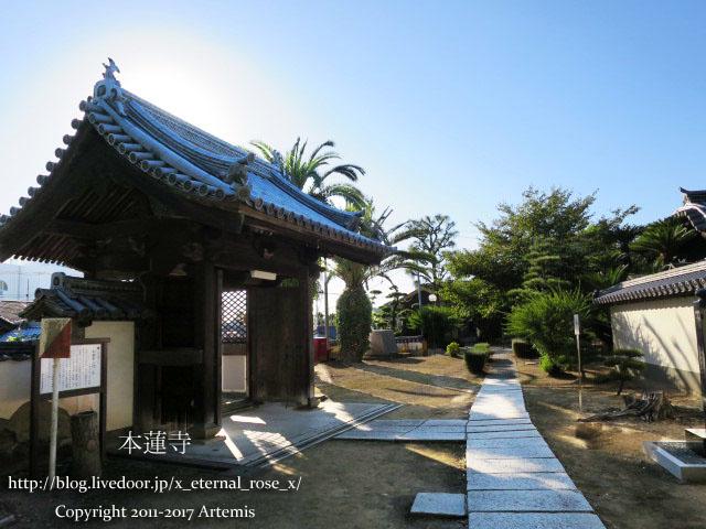 10 本蓮寺  (7)