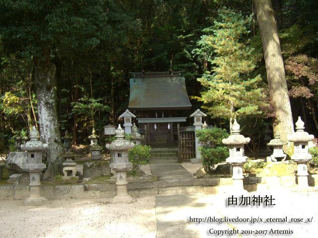 9 由加神社 和気  (45)