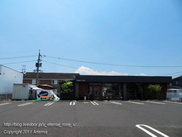19.8.17 シロサイ  (24)