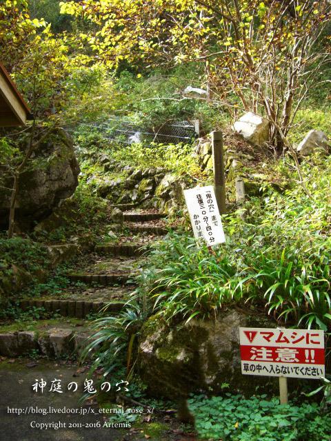 05 神庭の滝  (75)