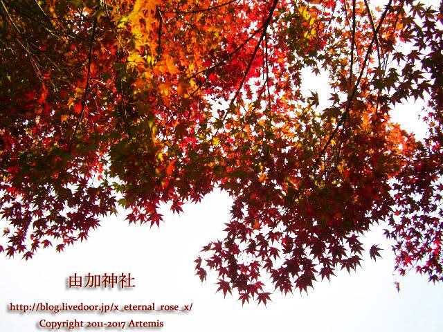 9 由加神社 和気  (36)
