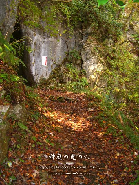 05 神庭の滝  (84)
