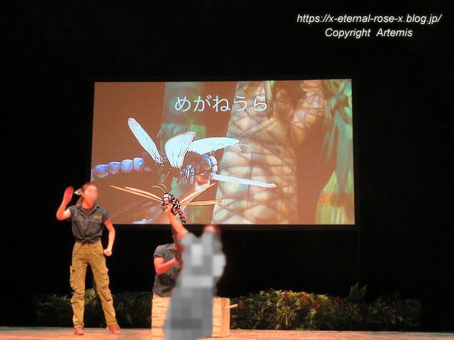 19.8.18.1 恐竜動物園 (25)