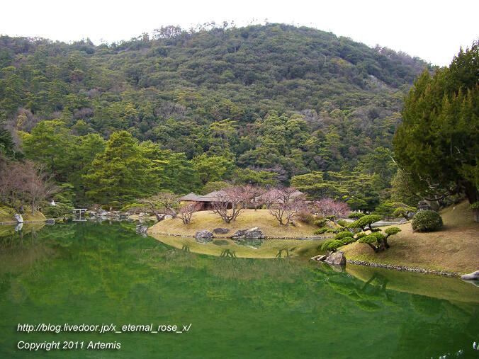 11.2.20 栗林公園  (34)