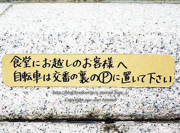 10 ちゃかぽこ洞  (49)