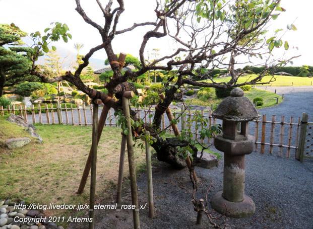 20.10.31.13 仙巌園  御殿  (31)