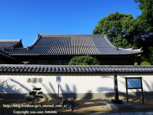 10 本蓮寺  (3)