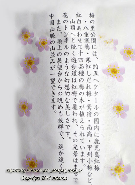 16.3.20.3 神代梅の里公園  (157)