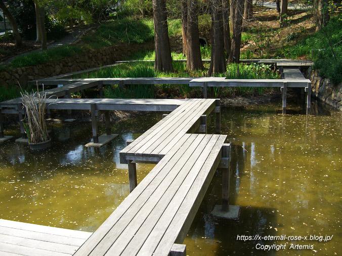 11.4.14.1 半田山植物園  (11)