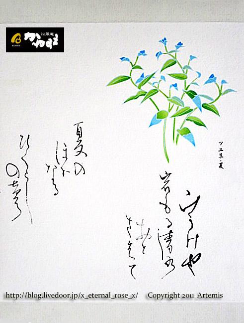 16.7.16.2 かねすえ  (17)