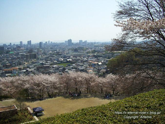 11.4.14.1 半田山植物園  (87)