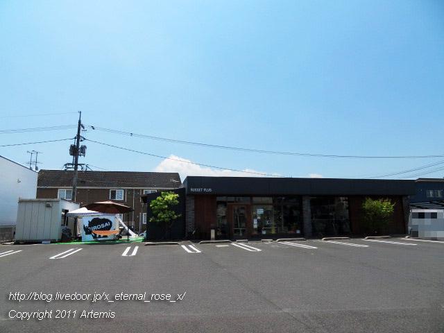 19.8.17 シロサイ  (23)