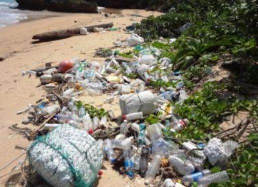 【社会】(沖縄)海外から有害漂着ごみ 廃ポリタンクや水銀を含む管球類廃棄物 生態系に危機 沖縄離島、深刻な状態