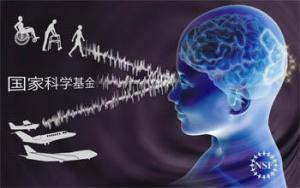 外国語を学ぶのに障害となるもの:科学ニュースの森