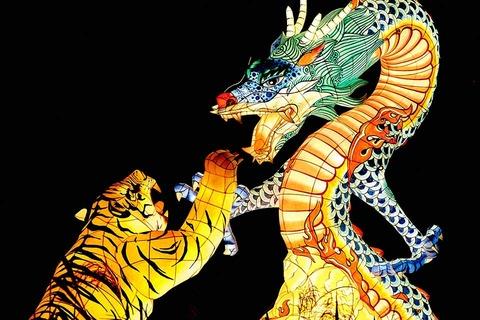 Dragon-Tiger-Game-At-Cashbet247