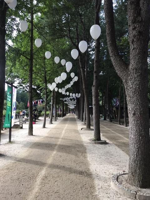 20170917韓国2日目_257
