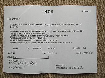 粍(2010.12.07)