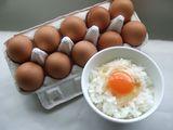 卵かけご飯写真一緒