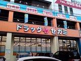 三芳町のドラッグセガミ