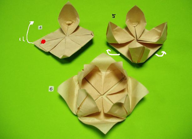 すべての折り紙 バラ作り方 折り紙 : 折り紙・バラとハスの折り方 ...