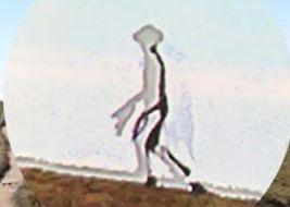 台湾の半透明宇宙人01