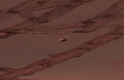 火星 生命エビ画像002