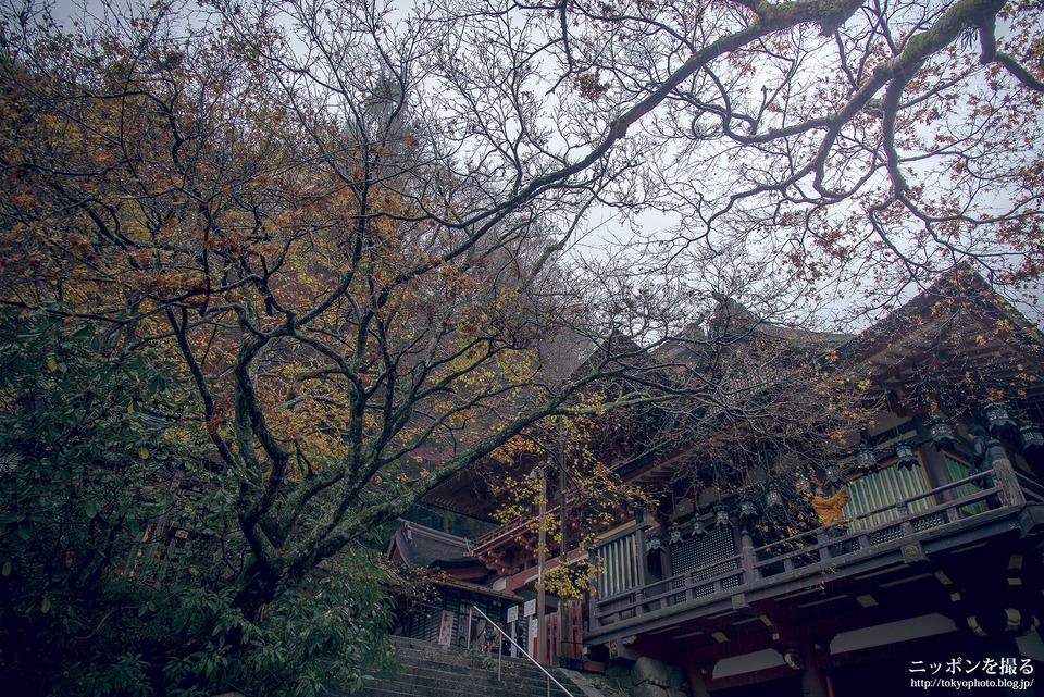 奈良_桜井市_談山神社_0267