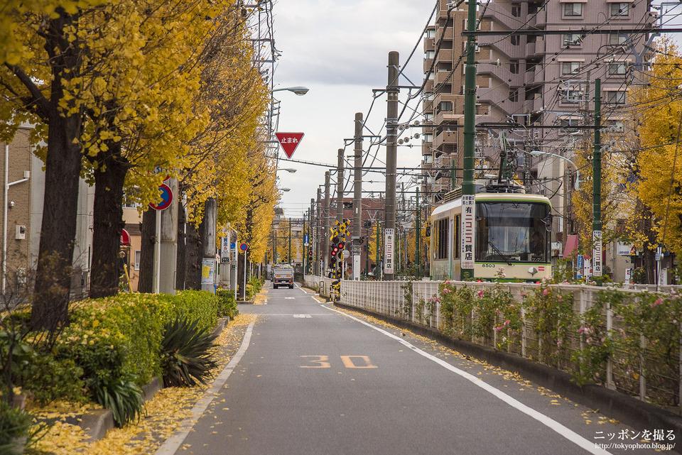 都電09_熊野前_1train