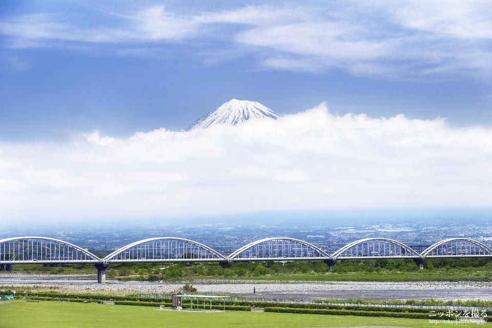 静岡-新富士_160422_0096