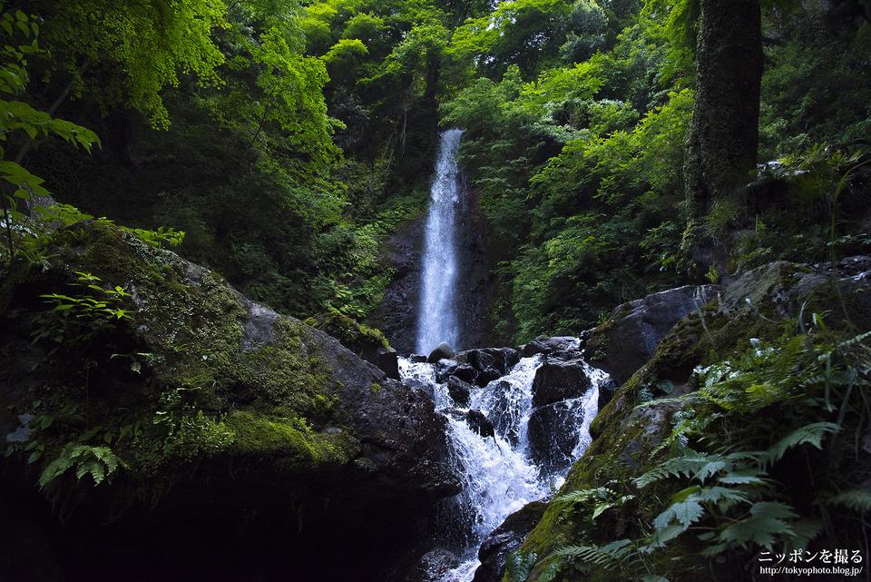 養老の滝_0251