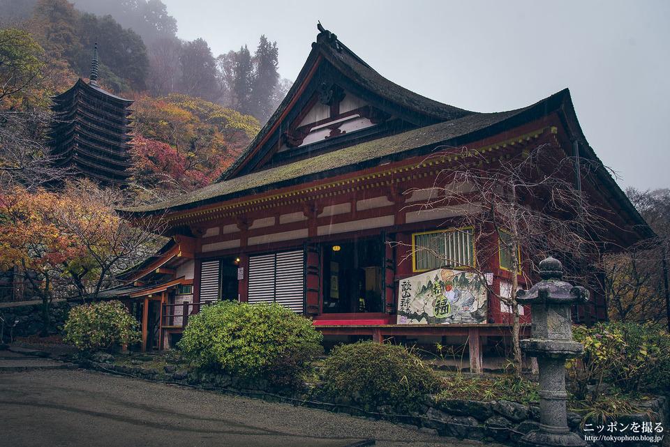 奈良_桜井市_談山神社_161127_0255