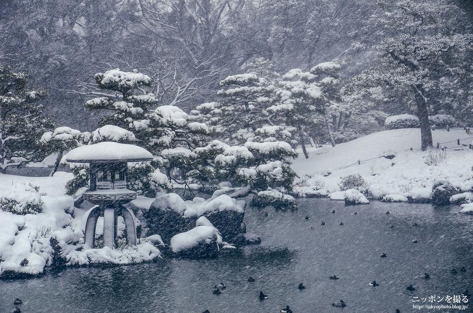 01_東京_江東区_清澄庭園