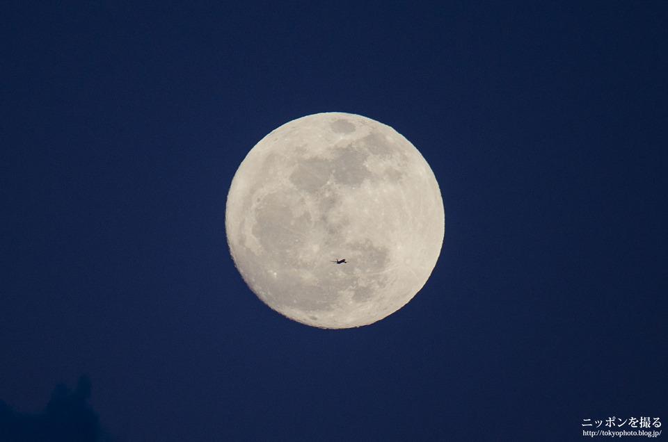 月について語ってく