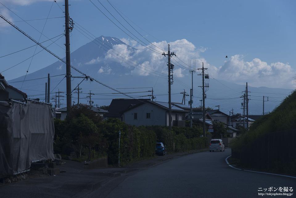 富士市の茶畑_0141