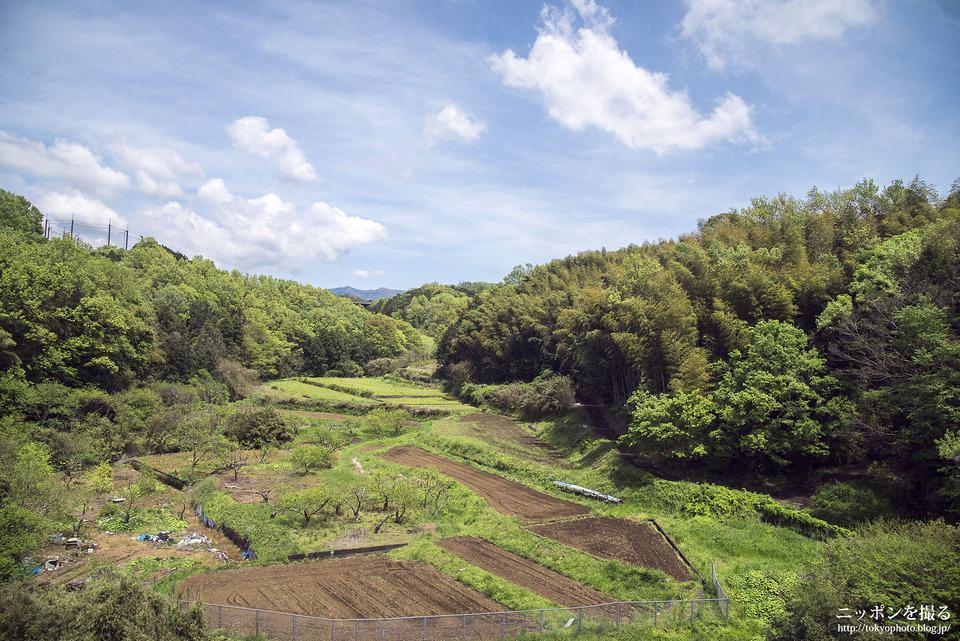 三島-熱海_160422_0123