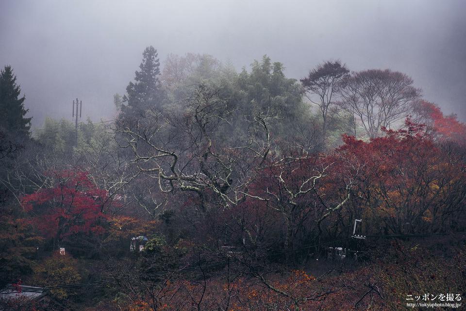 奈良_桜井市_談山神社_0279