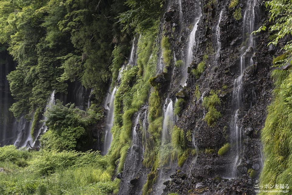 白糸の滝_0231