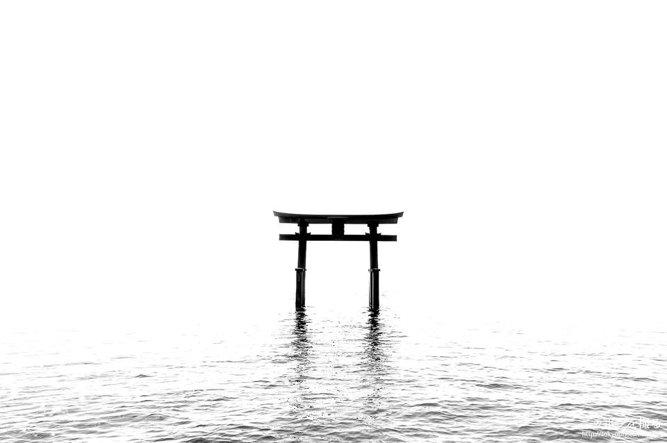 白鬚神社_3746