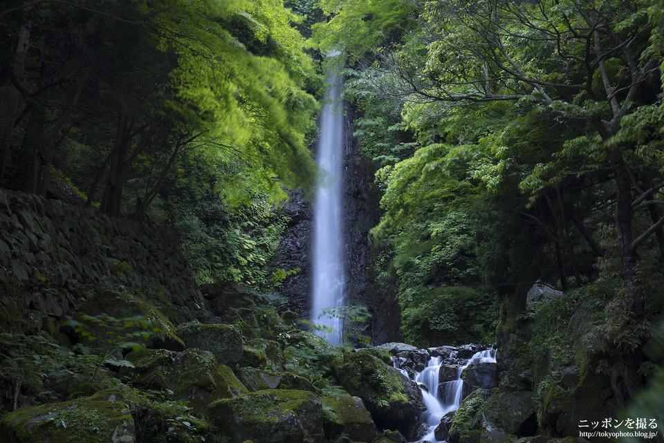 養老の滝_0180
